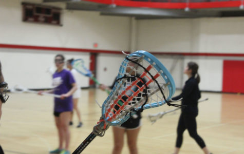 Girls Lacrosse Prepares for Second Season with Two Teams