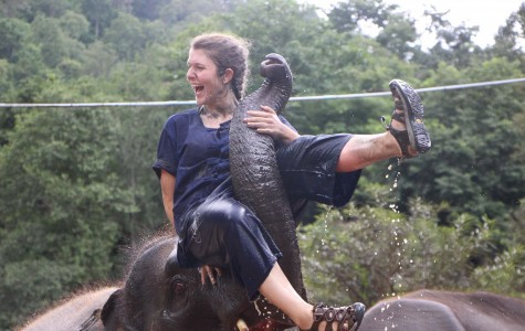 "Ashley Nensel, senior, participated in a Thailand service trip hosted by National Geographic. Her group had the opportunity to ride elephants. They also gave them mud baths. Said Nensel about the elephant experience,""It was truly gratifying. We were able to bathe them and get a better understanding of their elegance and beauty."""