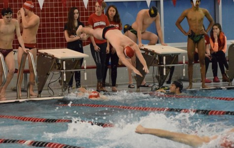 Boys Swimming, Diving Accomplish Goals for Season