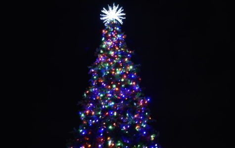 The tree lights up at the Mundelein Tree Lighting that took place on Dec. 6, 2019.
